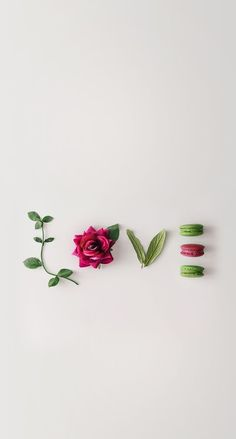 Flower Garden Design Plans Elegant Love iPhone Wallpaper 1 top Ideas to Try Tumblr Wallpaper, Screen Wallpaper, Mobile Wallpaper, Iphone Wallpaper, Wallpaper Ideas, Wallpaper Iphone Quotes Backgrounds, Floral Flowers, Flower Art, Belle Image Nature