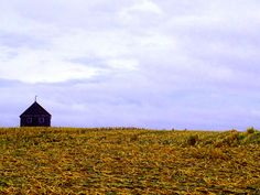 Harvest. Fall 2012. iPhone
