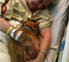 The title given this picture is End Of Life.  This lady is allowed to be comforted with the animal she loves.  Reminds me of JC with Norman and mother.