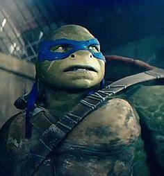 tmnt 2016 leo - Google Search Ninja Turtles Cartoon, Ninja Turtle Figures, Teenage Mutant Ninja Turtles, Mini Turtles, Cute Turtles, Baby Turtles, Ninja Turtle Bedroom, Tmnt Leo, Leonardo Tmnt