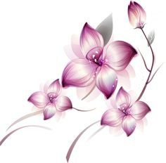 [Res] Purple Flowers PNG by HanaBell1.deviantart.com on @deviantART