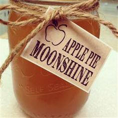 My friend brought this to my house last weekend and it was AWESOME so I am making it now... APPLE PIE MOONSHINE: * 1 Liter 190 proof grain alcohol * 1 Gallon apple cider * 1 Gallon apple juice * 6 small cinnamon sticks * 1 1/2 cup sugar DIRECTIONS: * Boil everything except alcohol in a large pot * Medium heat, stirring until sugar dissolves (20min) * Remove cinnamon sticks and allow liquid to cool * Stir in alcohol then pour into jars * Refrigerate until serving