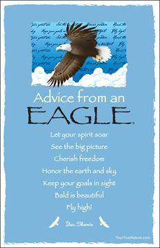 ☆ Advice From an 'EAGLE'☆