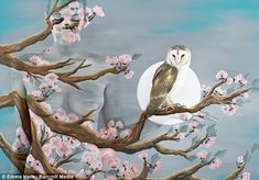 A live owl does its best still-life impression in one of Emma's bird scenes