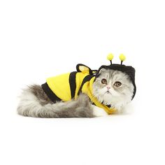 How could you possibly resist getting a photograph of your kitty channeling their inner buzz with this adorable bumblebee cat costume.