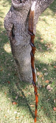 Twisted walking stick with carved eagle's head out of deer antler.