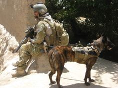 MPC / PSD Rocky (Cont.) He was also one of the first dogs to deploy with a Seal Platoon to Iraq in 2008. In 2009 he made another deployment with a Seal Platoon to Afghanistan. Rocky was tasked to do more than the standard military working dog.