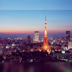Tokyo Tower, Paris Skyline, Tumblr, Nice, Instagram, Nice France, Tumbler