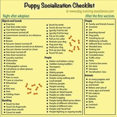 Pet Training - Puppy clicker training socialization is one of the most important things you should do with your new best friend. Learn the proper way to raise a confident and loving dog. This article help us to teach our dogs to bite just exactly the things that he needs to bite