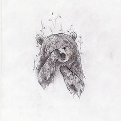 Bear illustration.