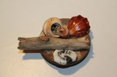 broche galets et coquillages