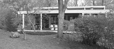 Growing Up in a Glass House: What Is it Like to Be the Daughter of an Uncompromising Modernist Architect?   Netfloor USA