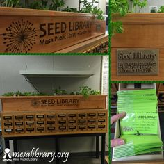 An old card catalog becomes a fabulous seed library, complete with a custom planter on top! #repurpose #seedlibrary