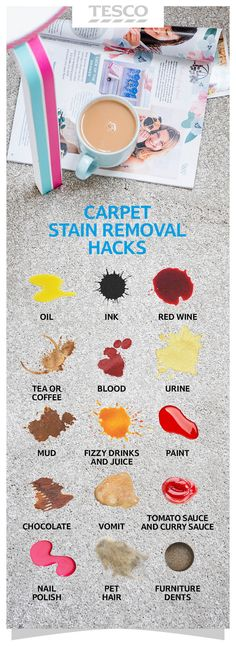 Spilt red wine on the carpet? Don't fret! Try our clever cleaning tips to quickly remove common household stains such as wine, tea, paint, mud and ink. | Tesco Living