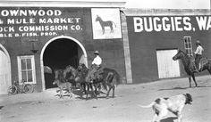 Brownwood Texas, Texas Treasures, Brown County, Deep, Memories, Marketing, History, Heart, Memoirs
