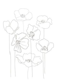 Line Drawing Poppy Flower Line Drawing Poppy Flower. Line Drawing Poppy Flower. Simple Poppy Drawing Simple Poppy Drawing Keywords in poppy flower drawing Poppies Poppy Drawing, Floral Drawing, Line Drawing, Flower Drawings, Art Floral, Motif Floral, Watercolor Flowers, Watercolor Art, Poppies Art
