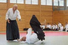 Aikidolehrgang im Budokan Wels / Oberösterreich, Mai 2014: Kokyo Nage