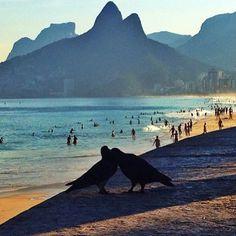 o amor está no ar...Praia de Ipanema - Brasil