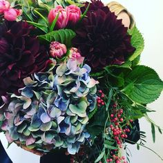 """166 Likes, 2 Comments - Kate Hill (@katehillflowers) on Instagram: """"Big birthday blooms for a special client designed by Rosie... Happy Birthday Nicole x…"""""""