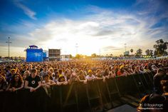 Vive septiembre a ritmo de festival Concerts, Backstage, Dolores Park, Music, Travel, Festivals, September, Live, Musica