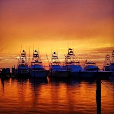 hookandtackle: Absolutely the Best time of the day! Was a crazy...   hookandtackle:  Absolutely the Best time of the day! Was a crazy week of weather but this Is the aftermath from the Emerald Coast Blue Marlin Classic Great shot from @obiewatts  in #destin #florida from the #fishecbc #sunset #hookandtackle #angler #fisherman #fishingboat #view #weather #outdoors #travel #sunprotectionclothing (at Sandestin Golf and Beach Resort)  Fishing Exposed