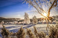 Winter in Finland by photographer Asko Kuittinen. Beautiful World, Beautiful Scenery, Arctic Circle, Winter Beauty, Baltic Sea, Best Cities, Winter Wonderland, Natural Beauty, Tourism