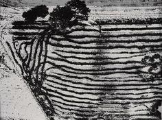Paesaggio by Mario Giacomelli