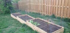 Kati's Square Foot Gardening Plan–Abundant Boxes – My Square Foot Garden