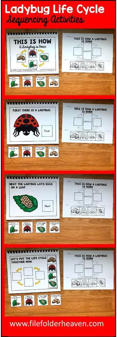 These Ladybug Life Cycle Sequencing Activities include 1 Adapted Book and 1 accompanying worksheet. The Ladybug Life Cycle Adapted Book teaches a simple 4 step life cycle for the ladybug, includes hands-on interaction with the text, and reinforces sequencing skills.  Adapted Book Included:    This Is How a Ladybug is Born  The teacher or therapist reads book as students follow along, matching each step of the life cycle on each page