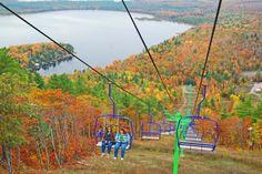 Falling for Michigan: Five Ways to Enjoy the Fall Foliage   | Pure Michigan Connect