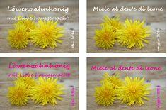 Etiketten_Loewenzahnhonig