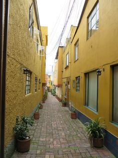 I loved this alley!! Usaquen neighborhood, Bogota, Colombia ©ClaudiaEB35