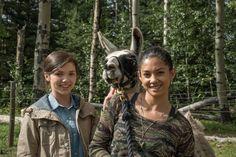 S 9 Georgie and Jade production picture Heartland Season 4, Heartland Amy, Alisha Newton, Pre Production, Best Tv, Teen Wolf, Dream Big, Seasons, Blog
