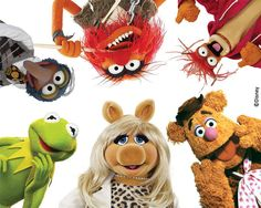 Go Wild by The Muppets | DecalGirl