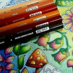 My selection of colours for the mushroom . ✔ Enchanted Forest @johannabasford [ No.6 ]. ✔ Prismacolor 72 . . . #desenhoscolorir #coloring_masterpieces #artecomoterapia #colorindolivrostop #coloringbook #beautifulcoloring #coloring_secrets #majesticcoloring #livrodecolorir #jardimsecreto #johannabasford #secretgarden #secretgardencoloringbook #artecomoterapia #jardimsecretolove #johannabasfordsecretgarden #boracolorirtop #prazeremcolorir #bayan_boyan #johannabasfordenchantedforest #arttherapy