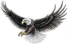 Free American Eagle Tattoos