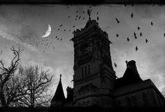 gothic raven images | Wallpaper gothic, castle, dark, moon, raven desktop wallpaper » Other ...