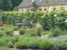 Schloß und Park Altdöbern - Orangerie - Kräutergarten