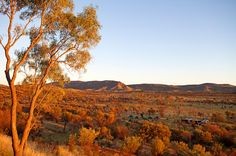 Hike the Larapinta Trail with World Expeditions and you arrive at night to your semi permanent wilderness camp, complete with a swag and tent - no more carrying your mat and tent  | Great Walks of Australia