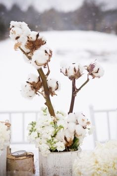 Love this wintery flower
