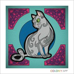 Colorfy Kitty