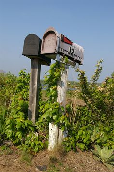 Mailboxes, Great Island, Narragansett, RI by pocius, via Flickr