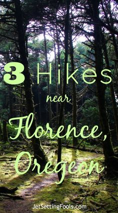 3 Easy Hikes near Florence, Oregon - Jetsetting Fools Of the 3 easy hikes near Florence, Oregon, one led to waterfalls, another down to an expansive beach and the third to the dramatic cliffs on the coast. Oregon Vacation, Oregon Travel, Travel Portland, Florence Oregon, Newport Oregon, Portland Oregon, Colorado Hiking, Oregon Hiking, Oregon Camping