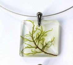 Leaf Star Wild Flower Resin Pendant white gold plated filled chain pewter bail, Handmade in Ireland Irish Green, girlfriend gift, bridesmaid by FernBerryBoutique on Etsy Eco Resin, Clear Resin, Resin Pendant, Glass Pendants, Fern Tattoo, Resin Necklace, Love Symbols, Gold Filled Chain, Flower Pendant