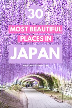 When you're planning a visit, it's quite hard to decide what the best destinations in Japan are. There are just so many places that are worth your time: historic castles, unusual landscapes, amazing mountains… Not only are there a lot of popular places that definitely should be included in your itinerary, there are also a lot lesser known spots. In this article you can find the most beautiful places in Japan! #Japan #wanderlust #beautifuldestinations #worldtrip #asia #japantrips Japan Travel Guide, Tokyo Travel, Asia Travel, Travel Guides, Travel Advice, Amazing Destinations, Travel Destinations, Japan Travel Photography, Beautiful Places In Japan