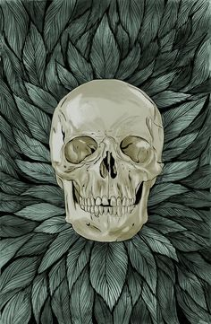 Skull by Zach Meyer