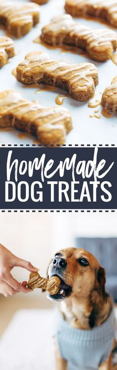 Homemade Dog Treats - 5 ingredient wholesome treats for your pup! | pinchofyum.com | cute puppies and dog training advice by @KaufmannsPuppy