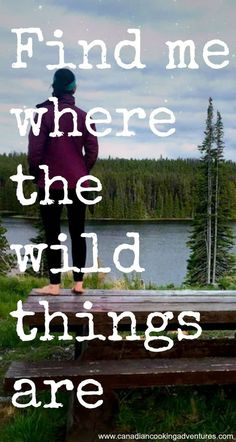 Best Ideas For Nature Forest Quotes Adventure Good Quotes, Life Quotes Love, Motivational Quotes For Life, Inspirational Quotes, Feeling Free Quotes, Wild Things Quotes, Wild Girl Quotes, Camp Quotes, Travel Quotes