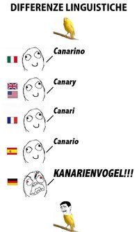 Differenze Linguistiche strikes again!