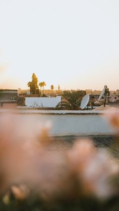 News Blog, Check It Out, Morocco, This Is Us, Surfing, Posts, Explore, Travel, Photo Illustration
